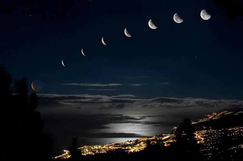 Лунный календарь цветовода 2020