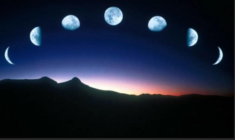 Лунный календарь цветовода на апрель 2021 года