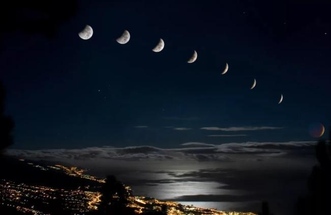 Лунный календарь цветовода на июнь 2021